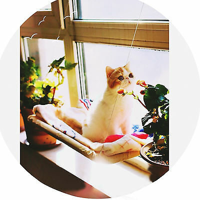 Pet Cat Bed Window Mount Bed Nest Washable Resting Sunny Seat Saving Resting