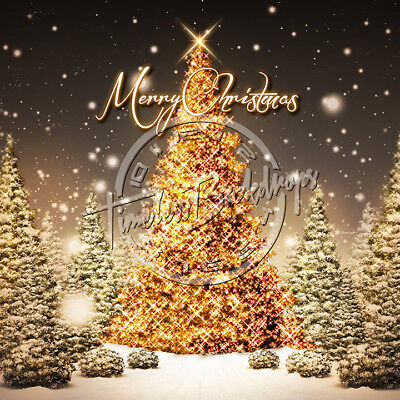 10X10 Digital Printed Backgrounds (CHRISTMAS-3) Timeless Backdrops