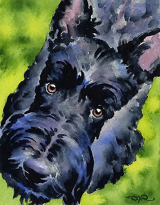 SCOTTISH TERRIER Dog Watercolor 8 x 10 ART Print Signed by Artist DJR