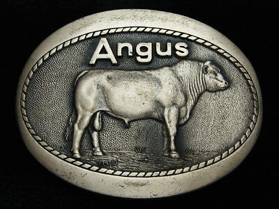 QK05136 VINTAGE 1980s **ANGUS** CATTLE BREED SOLID BRASS BELT BUCKLE