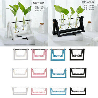 Hanging Glass Flower Planter Vase Tabletop Hydroponic Terrarium With Wood Tray