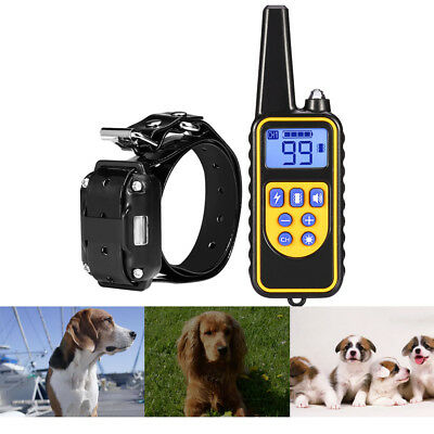 800m Waterproof Remote Control Pet Dog LCD Electric Training Collar Backlight