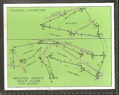 Players-Championship Golf Courses-#14- Walton Heath