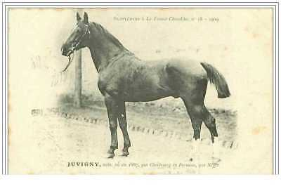 Hippisme.n°6.juvigny.noi R ,ne En 1887 Par ..........supplement A La France Ch