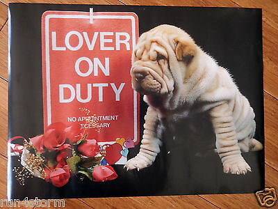 """Chinese Shar-Per Dog """"Lover on Duty"""" 11 ½"""" x 15 ½"""" Poster"""
