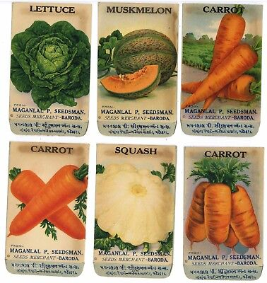Set of 6 Different Antique Vegetable Seed Packets, Carrot, Melon 1910-20's, H07