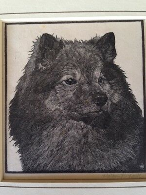 Etching Print 1930's Keeshond Dog SIGNED Scarce by Helen R. Lock ANTIQUE