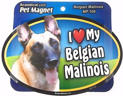 I LOVE MY BELGIAN MALINOIS  Dog Gifts, Cars, Trucks. Lockers, Refrigerator