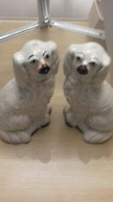 ANTIQUE Pair of STAFFORDSHIRE SPANIEL DOGS Lovely ! Almost 7 inches high !