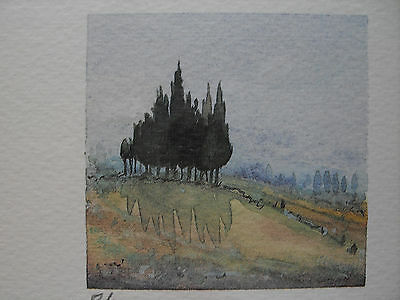 "★ FARB-LITHOGRAPHIE ★ signiert 8/300 ""Toscana"" OVP! TOP!"