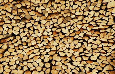 Firewood business northampton job opportunity logs for sale