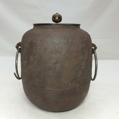 D815: Japanese iron teakettle CHAGAMA with fine relief of tortoise-shell pattern