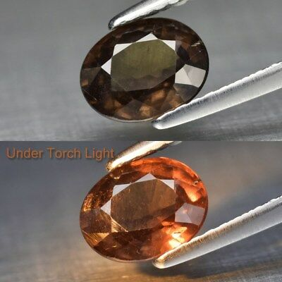 1.35ct 7.3x5.7mm Oval Natural Unheated Color Change Garnet, Africa