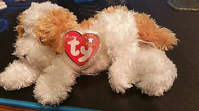 Ty Beanie Baby ~ DARLING the Puppy Dog ~ MINT with MINT TAGS ~ RETIRED