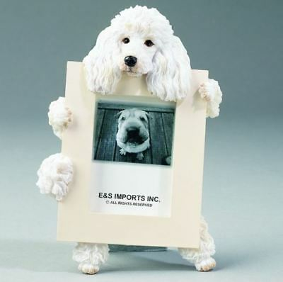 "POODLE (white) DOG PHOTO PICTURE FRAME GIFT RESIN 2-1/2""X3-1/2"""