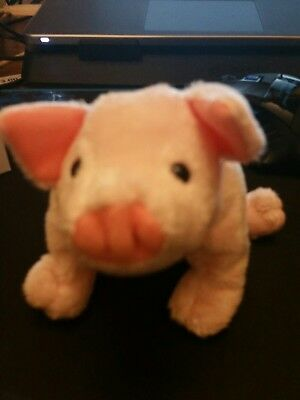 TY BEANIE BABIES Luau (Pink Pig 2003), Retired With no Tag