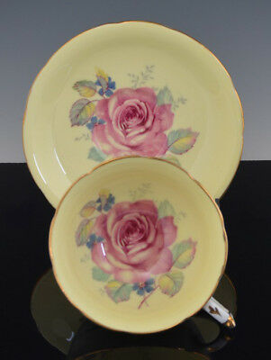 Vintage Scarce Footed PARAGON CUP & SAUCER Yellow with XL CABBAGE ROSE NR