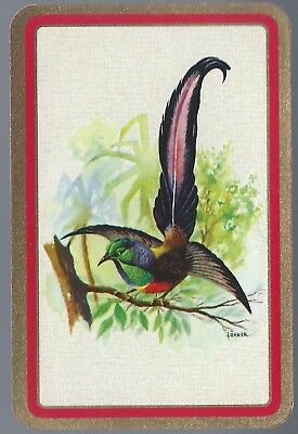 Vintage Playing Swap Cards    BIRD Red Border