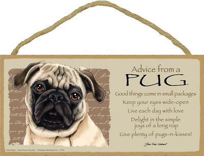 """Advice from a Pug Sign Plaque Dog 10"""" x 5"""" gift fawn"""