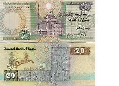 20 Egyptian Pound note Uncirculated Brand new with Free Post