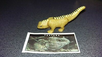 YOWIE Series 1. TUATARA with info paper + Toy Collectible