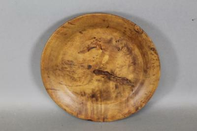 A Great Late 18Th C American Tiger And Burl Maple Plate Full Rim Nice Old Color