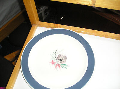 iconic  hand painted Susie Cooper floral patterned plate blue dahlia 2413 vgc