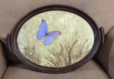 """Antique 16"""" Oval Butterfly Scenic Tray-100% authentic-made of real butterflies"""