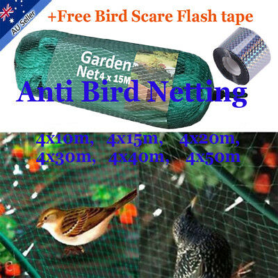 Commercial Fruit Tree Plant Knitted Anti Bird Netting Pest Net Mesh Bird Catch