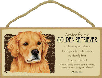 """Advice from a Golden Retriever Sign Plaque Dog 10"""" x 5"""" gift"""