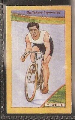 Gallaher-British Champions Of 1923-#57- Cycling - A White