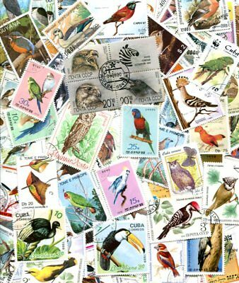 Exotic Collection Of 300 Different Bird Stamps - No Damaged Or Hinged!