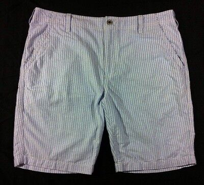 EXPRESS ~ Men's Blue & White Striped Oxford Cotton Shorts, Sz 38