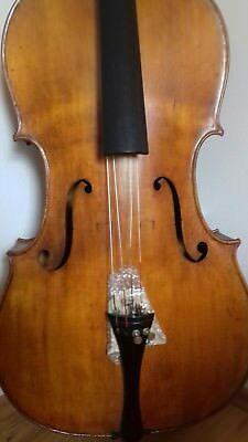 Mr298 cello 4/4