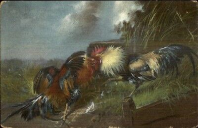 Cock Fight Chickens German American Novelty Postcard c1910