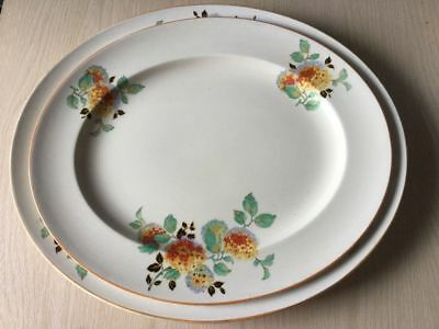 Burleigh Ware B & L Ltd Set Of 2 Oval Meat Plates Vintage China
