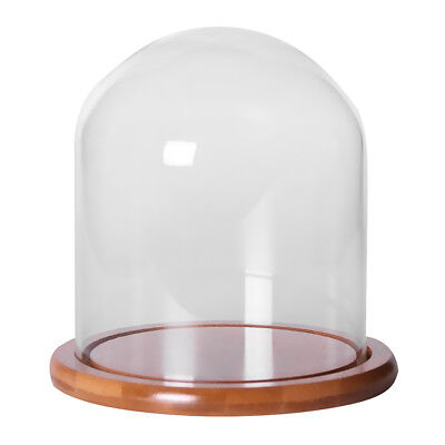 Glass Display Bell Jar Dome Cloche With Bamboo Base Decorative Desk Stand S