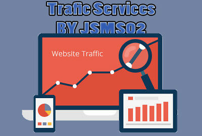 i will send Real 300 daily traffic  for 1 month To Amazon, eBay, Etsy, Shopify..