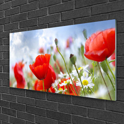 Glass print Wall art 100x50 Image Picture Poppies Daisies Floral