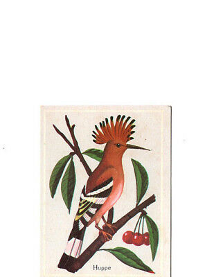 "Image Vignette Ancienne Cartonne "" Bon Point "" Oiseau La Huppe"