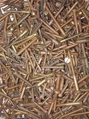 Vintage Flathead Brass Wood Screws All Sizes New Approx. 18Ibs