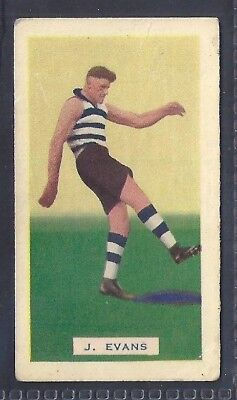 Hoadleys-Victorian Football Ers (Action)-Aussie Rules-#032- Geelong - Evans