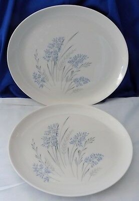 "Lot 2 Syracuse True China Carefree Blue Grass Serving Platter Plate Dish 12"" 11"""