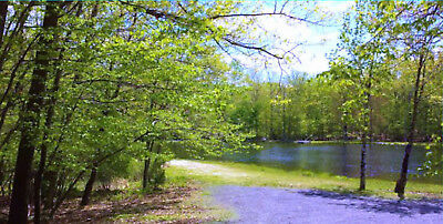 LAKESIDE Lot- 0.9 acres-90 mi NYC- Pocono Mtns- Delaware River-Year-round Beauty
