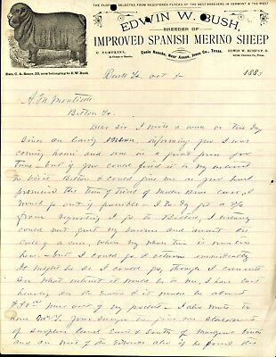 1883 Anson Texas CUSIO RANCH Edwin Bush SPANISH MERINO SHEEP Letterhead