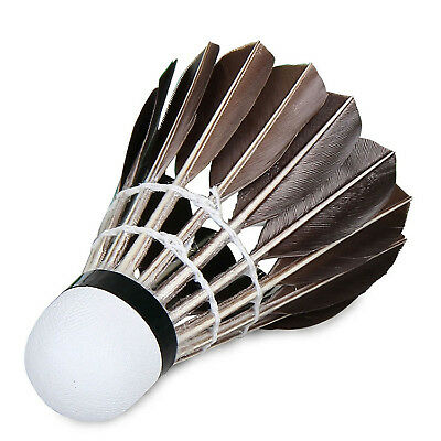 12X Training Sport White Goose Feather Birdy Ball Game Shuttlecock Badminton UP
