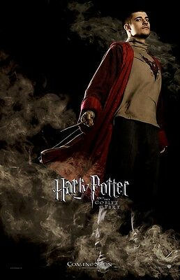 Harry Potter movie poster print : Viktor Krum, Goblet Of Fire