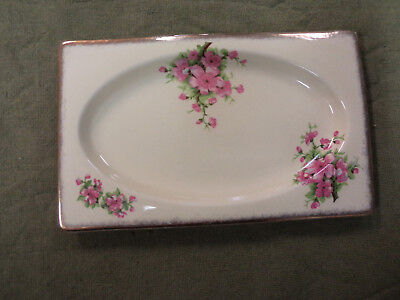 "#cc11.   Royal Staffordshire  ""the Biarritz""  Dish"