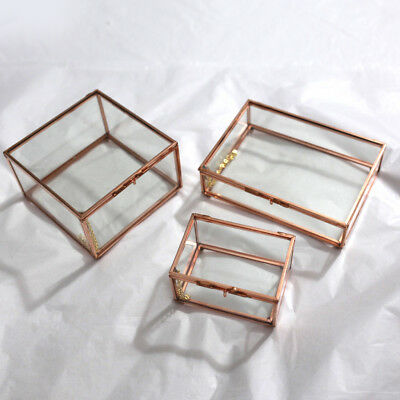 Modern Glass Metal Cuboid Geometric Terrarium Succulent Plants Planter Container