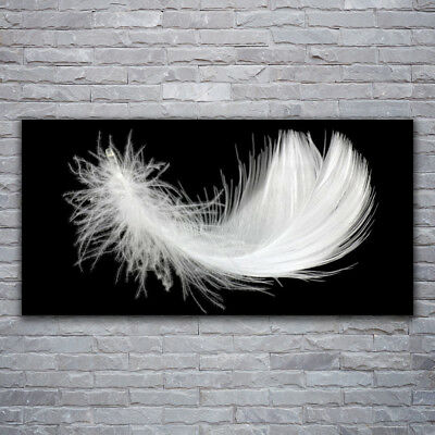 Canvas print Wall art on 120x60 Image Picture Feather Art